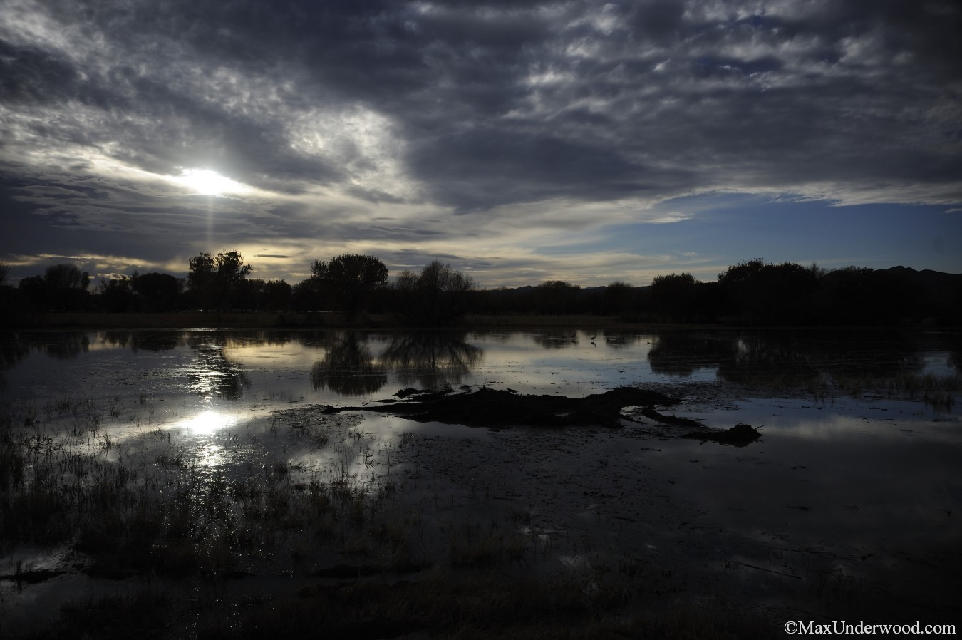 Bosque del Apache at sunset, marsh, swamp, swamplands, cloudy, San Antonio, NM. Nature photography.